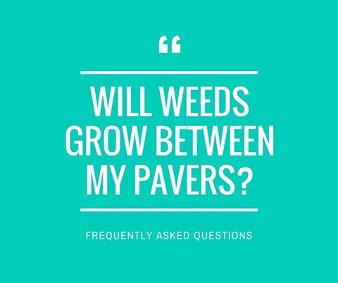 how to kill weeds in brick pavers